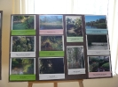 Zakonczenie Programu Edukacji Ekologicznej_31