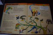Dionozaury są wśród nas