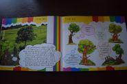 Drzewa i las wokół nas