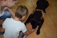 Warsztaty na temat bezpiecznego kontaktu z psem - relacje
