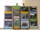 Zakonczenie Programu Edukacji Ekologicznej_28