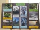 Zakonczenie Programu Edukacji Ekologicznej_29