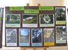 Zakonczenie Programu Edukacji Ekologicznej_30